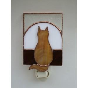 tabby cat window
