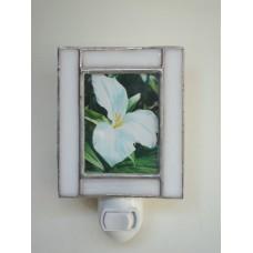 vertical pic frame